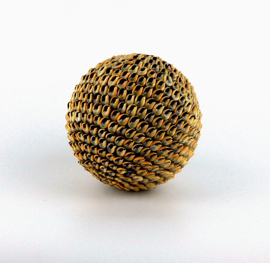 Schelpen bal