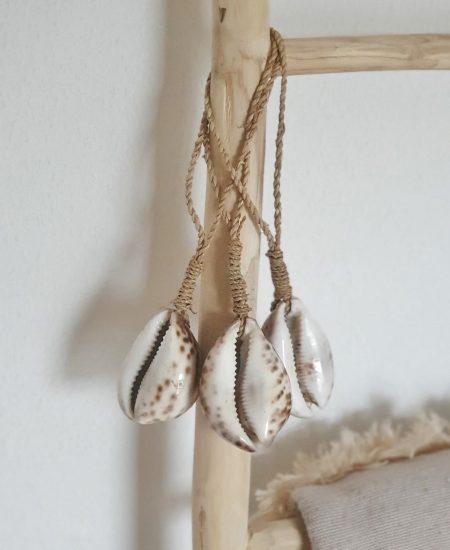 Grote kauri schelp bali decoratie